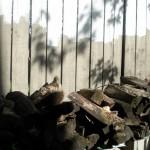 woodpile-2